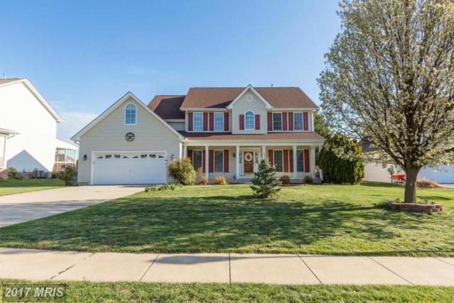107 Van Gogh Terrace, Winchester, VA 22602 (#FV9618861) :: LoCoMusings