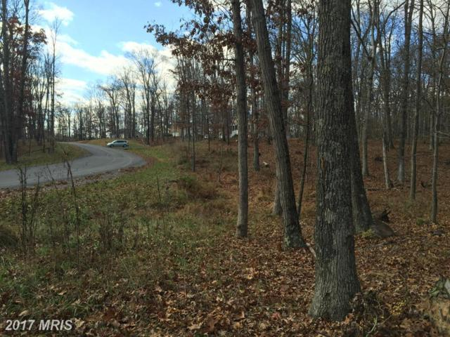 Lot 5 Christo Rey Drive, Clear Brook, VA 22624 (#FV9832795) :: LoCoMusings