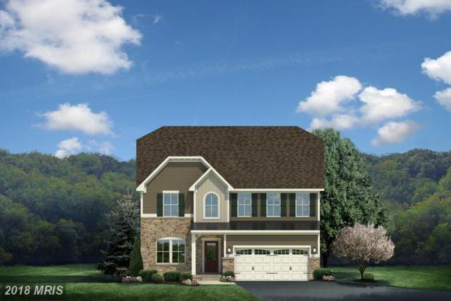 0050 Atlantis Lane, LAKE FREDERICK, VA 22630 (#FV9898159) :: Browning Homes Group