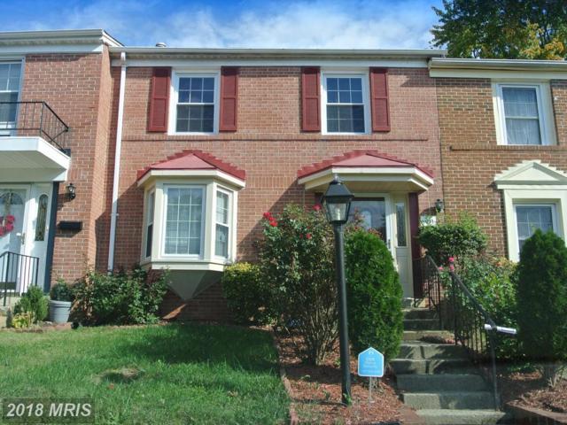 8051 Saint Annes Court, Alexandria, VA 22309 (#FX10098135) :: Pearson Smith Realty