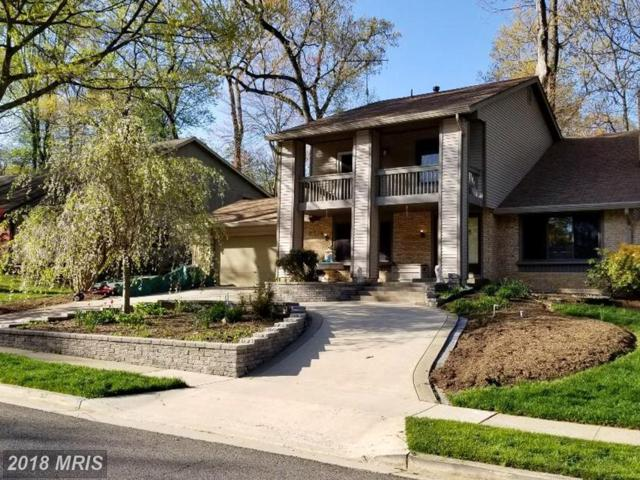 5334 Black Oak Drive, Fairfax, VA 22032 (#FX10239210) :: Bob Lucido Team of Keller Williams Integrity