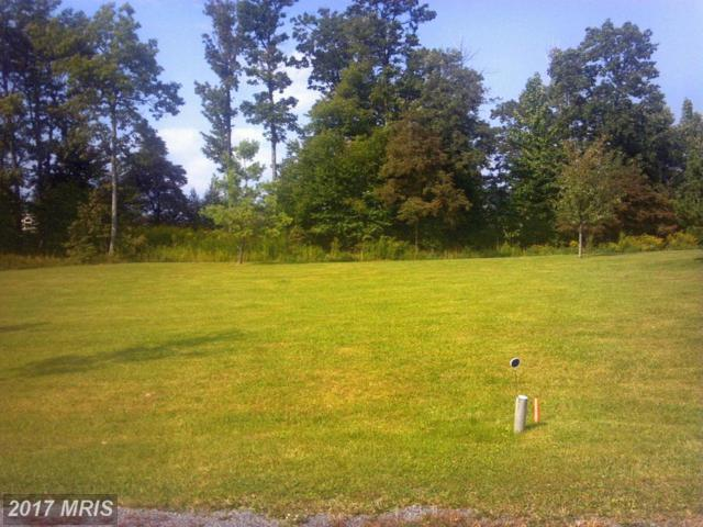 5 Mountain Overlook Court, McHenry, MD 21541 (#GA8501554) :: LoCoMusings