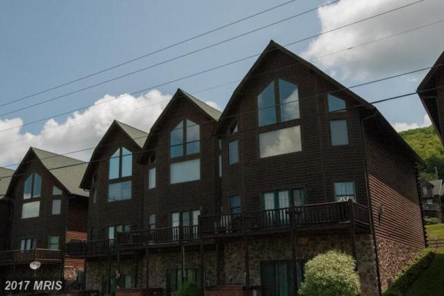 16 Cedar Shores Drive #15, McHenry, MD 21541 (#GA8600535) :: LoCoMusings