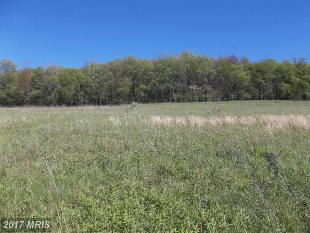 LOT 7 North Pass Trail, Deer Park, MD 21550 (#GA8629800) :: LoCoMusings