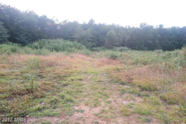 38 Eagles Point Drive, Grantsville, MD 21536 (#GA9596567) :: LoCoMusings