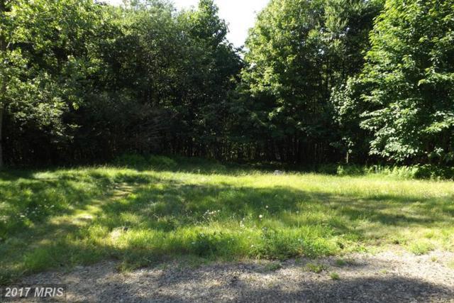 238 Windswept Lane, Grantsville, MD 21536 (#GA9607636) :: LoCoMusings