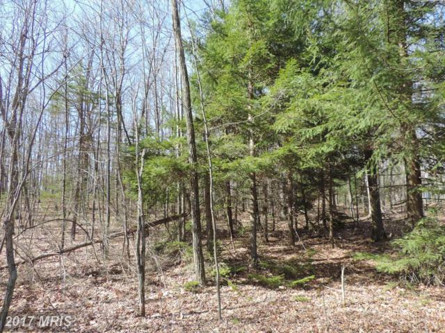 157-PARCEL Mosser Road, McHenry, MD 21541 (#GA9609203) :: Pearson Smith Realty