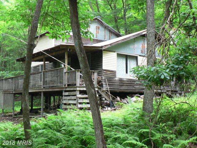 26-LOT 26 Elkhorn Sub Div, Petersburg, WV 26847 (#GT9722362) :: Pearson Smith Realty