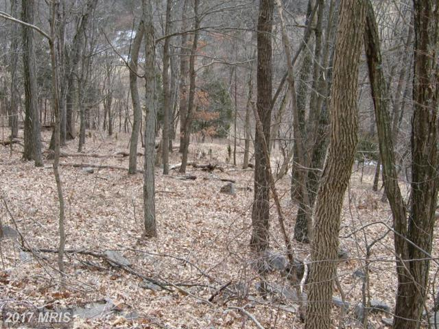 Highland Springs Rd., Old Fields, WV 26845 (#HD8289123) :: Pearson Smith Realty