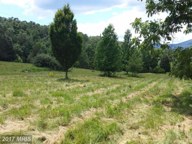 West Brook Road Lot E, Old Fields, WV 26845 (#HD9706052) :: LoCoMusings