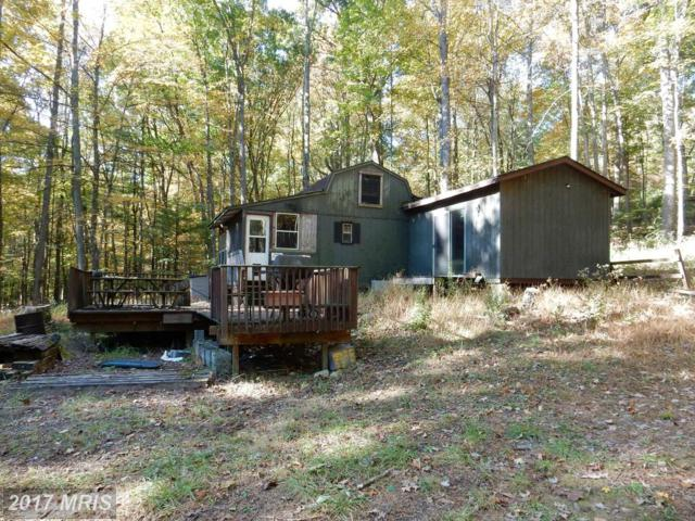 489 Wild Turkey Ridge, Lost City, WV 26810 (#HD9785806) :: Pearson Smith Realty