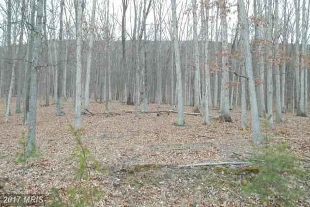 Chestnut Oak Lane, Romney, WV 26757 (#HS8540904) :: LoCoMusings