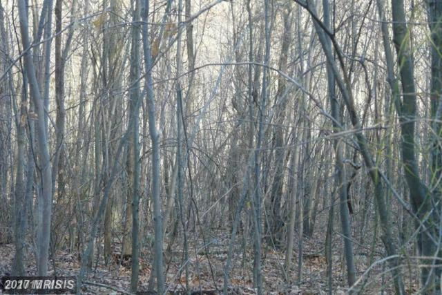 LOT E Chestnut Drive, Augusta, WV 26704 (#HS8749146) :: Pearson Smith Realty