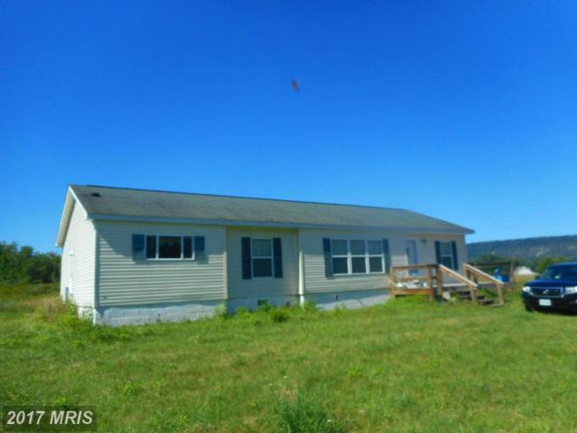 130 Horseshoe Bend Road, Green Spring, WV 26722 (#HS9736747) :: Pearson Smith Realty