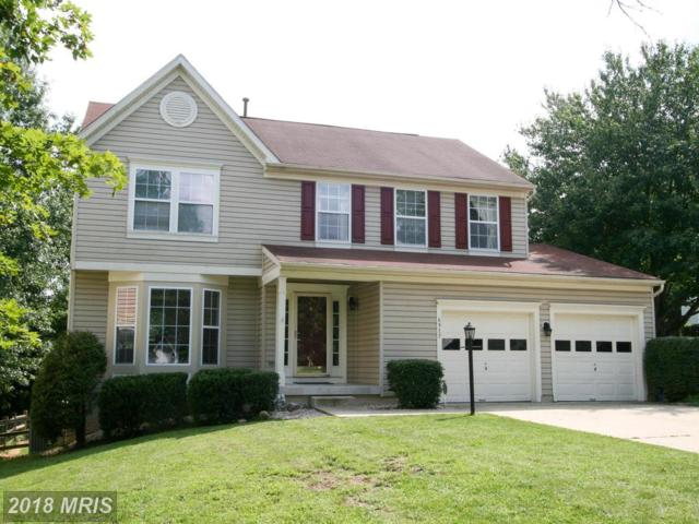 6517 Waving Tree Court, Columbia, MD 21044 (#HW10030540) :: Pearson Smith Realty