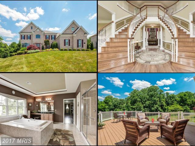 4958 Valley View Overlook, Ellicott City, MD 21042 (#HW10030746) :: Pearson Smith Realty