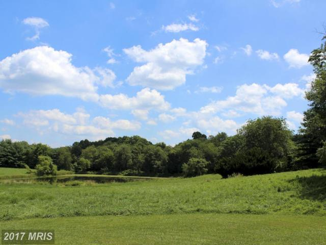 2 Old Frederick Road, Mount Airy, MD 21771 (#HW9810611) :: Pearson Smith Realty