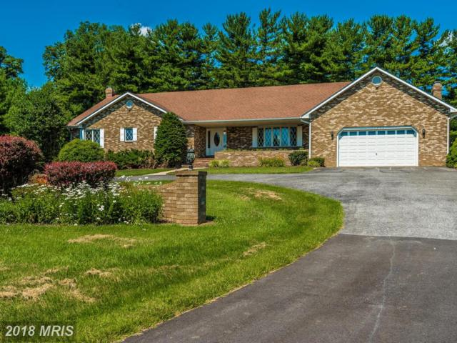 17502 Country View Way, Mount Airy, MD 21771 (#HW9985756) :: The Gus Anthony Team