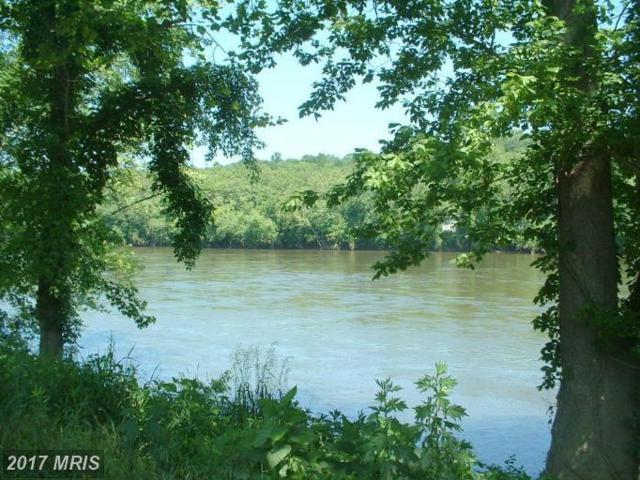 River, Shepherdstown, WV 25443 (#JF7839624) :: LoCoMusings