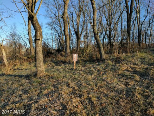 13 Briar Mountain Drive, Shepherdstown, WV 25443 (#JF9810083) :: Pearson Smith Realty