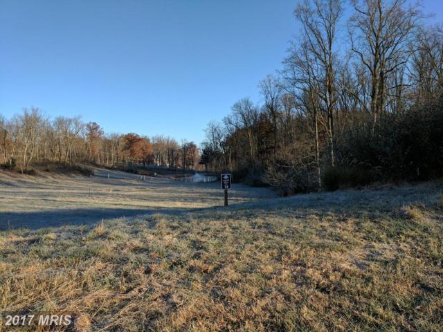 14 Briar Mountain Drive, Shepherdstown, WV 25443 (#JF9810089) :: Pearson Smith Realty