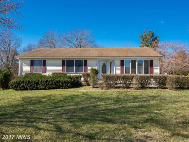 66 Cavalier Est Drive, Harpers Ferry, WV 25425 (#JF9849989) :: Pearson Smith Realty