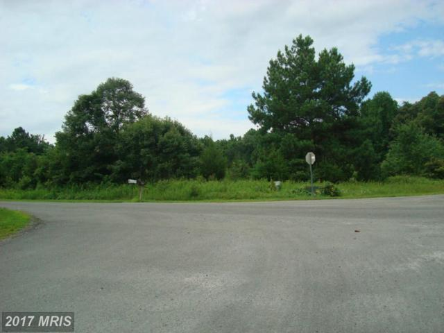 Belmont Lane, Louisa, VA 23093 (#LA8694792) :: Pearson Smith Realty