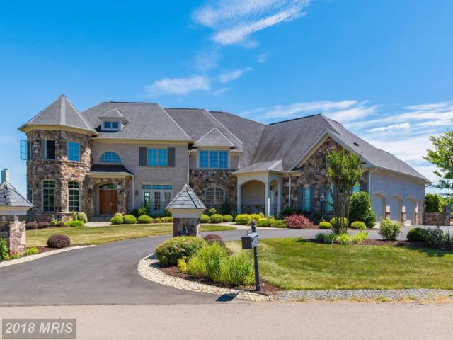 40638 Grenata Preserve Place, Leesburg, VA 20175 (#LO10008258) :: Keller Williams Pat Hiban Real Estate Group