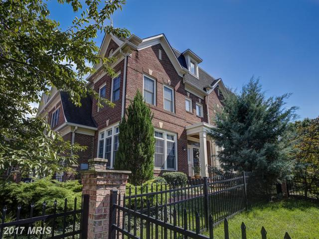 18335 Buccaneer Terrace E, Leesburg, VA 20176 (#LO10014094) :: Pearson Smith Realty