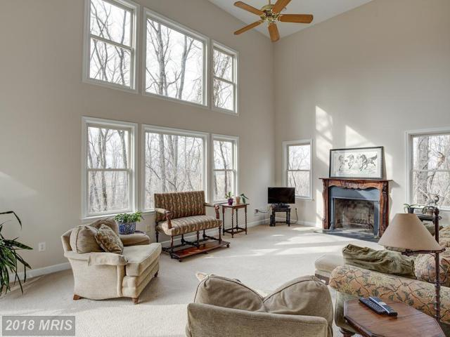 14987 Thicket Court, Waterford, VA 20197 (#LO10178512) :: The Gus Anthony Team