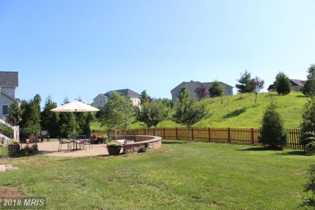 24332 Eagles Landing Place, Aldie, VA 20105 (#LO10330131) :: Colgan Real Estate