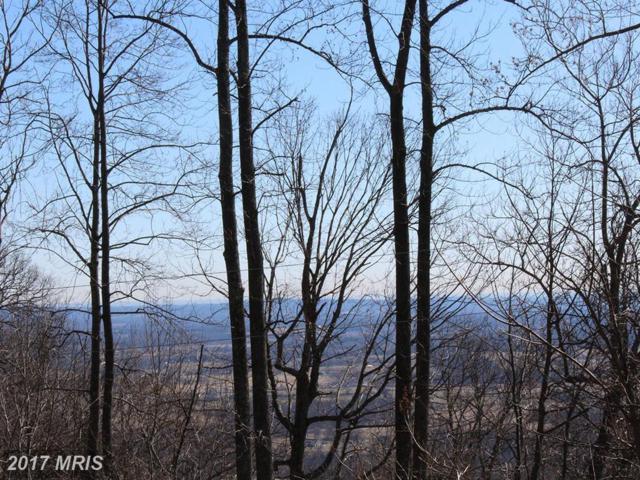 0 Forest Hill Lane, Bluemont, VA 20135 (#LO9595664) :: LoCoMusings