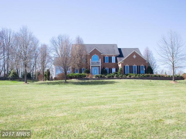 19425 Lancer Circle, Purcellville, VA 20132 (#LO9891871) :: LoCoMusings