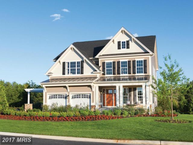 41333 Lavender Breeze Circle, Aldie, VA 20105 (#LO9910171) :: LoCoMusings