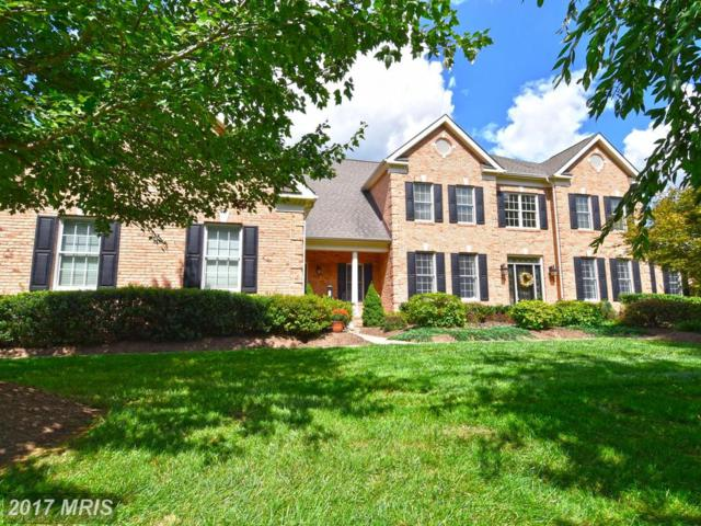 40414 Thomas Mill Road, Leesburg, VA 20175 (#LO9971160) :: Pearson Smith Realty