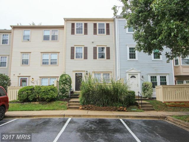20107 Locustdale Drive #301, Germantown, MD 20876 (#MC9777775) :: Dart Homes