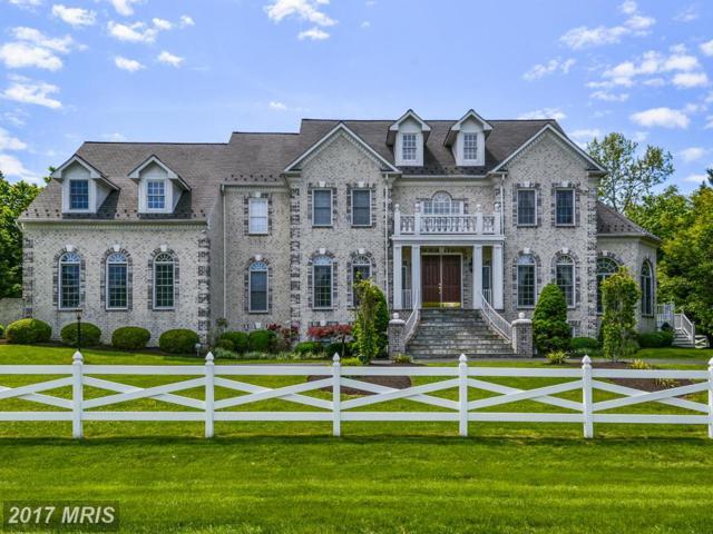 13116 Brushwood Way, Potomac, MD 20854 (#MC9942884) :: Pearson Smith Realty