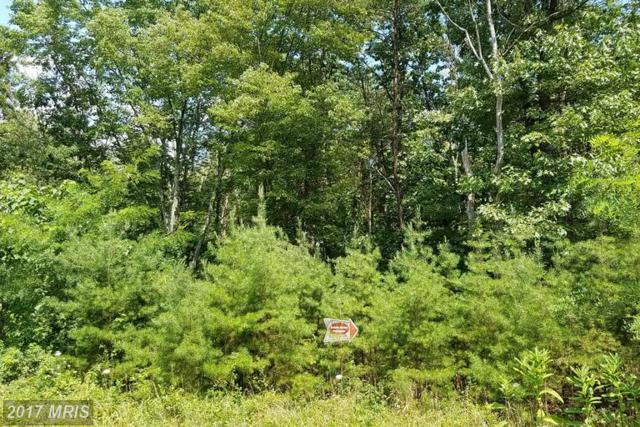 9 Silage Lane, Berkeley Springs, WV 25411 (#MO8305155) :: Pearson Smith Realty