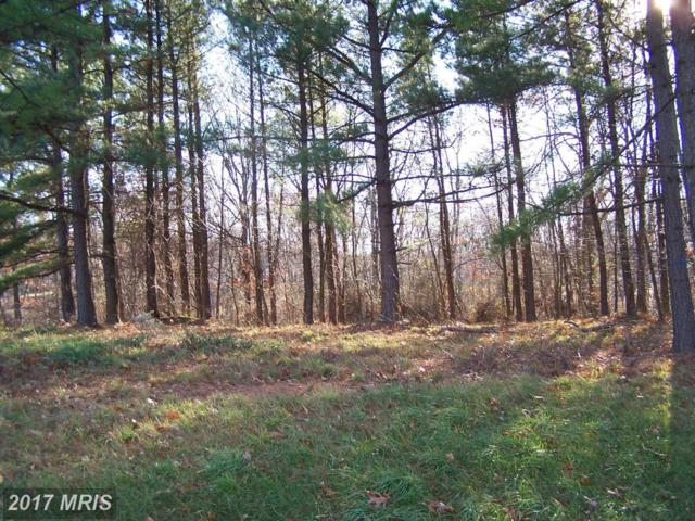 Fairview Oaks Lane, Berkeley Springs, WV 25411 (#MO8450915) :: Pearson Smith Realty