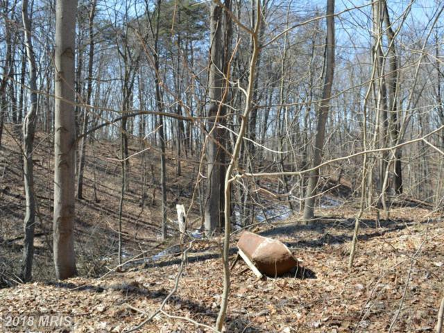 Little Creek Trail, Berkeley Springs, WV 25411 (#MO8580548) :: Pearson Smith Realty