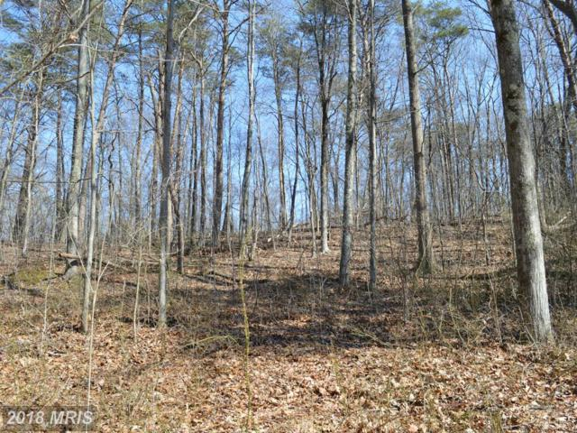 Little Creek Trail, Berkeley Springs, WV 25411 (#MO8580565) :: Pearson Smith Realty