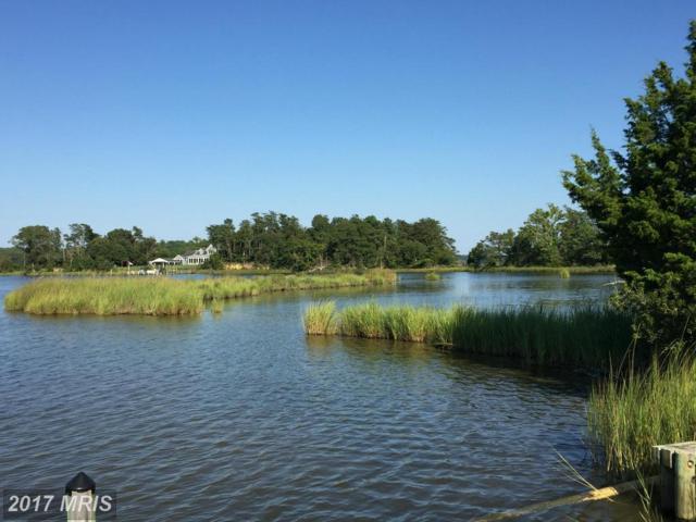 Island Point Road, Heathsville, VA 22473 (#NV9683482) :: Pearson Smith Realty
