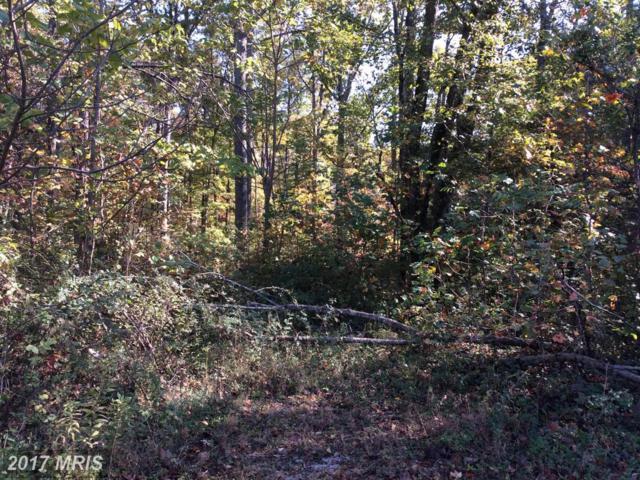 Colonial Lane, Locust Grove, VA 22508 (#OR9775126) :: Pearson Smith Realty