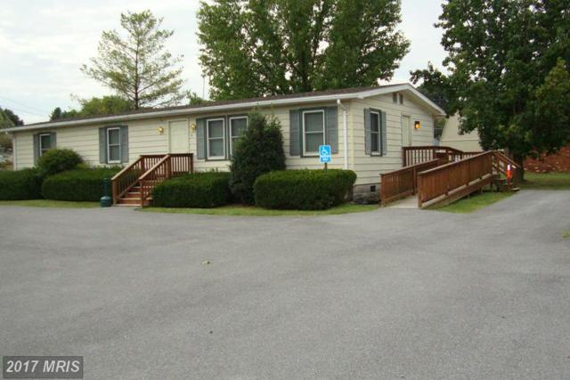 4 Canaan Street, Luray, VA 22835 (#PA8746134) :: LoCoMusings