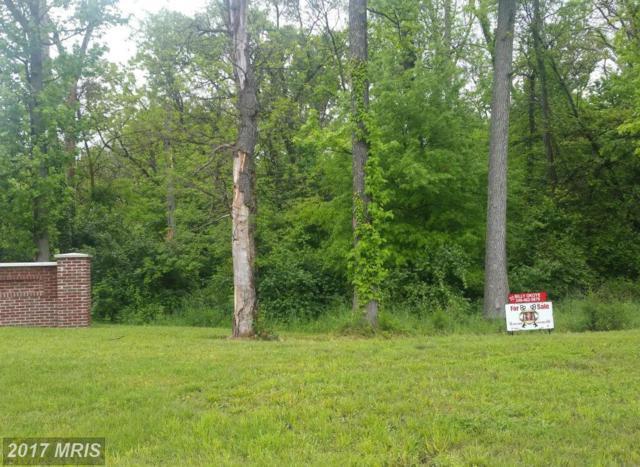 2901 Bealls Pleasure Lane, Landover, MD 20785 (#PG9009656) :: LoCoMusings