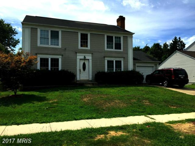11711 Balsamwood Terrace, Laurel, MD 20708 (#PG9740002) :: Pearson Smith Realty