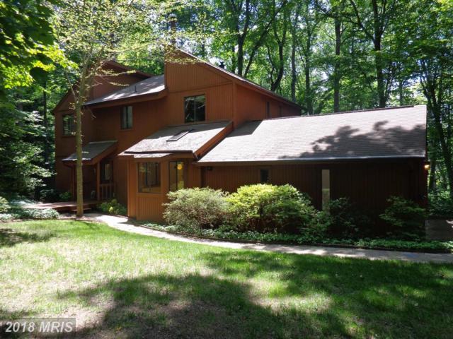 6171 Occoquan Forest Drive, Manassas, VA 20112 (#PW9849260) :: Pearson Smith Realty