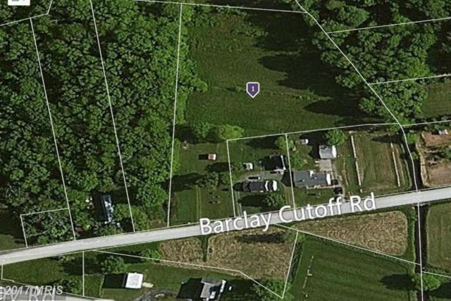 115 Barclay Cutoff Road, Barclay, MD 21607 (#QA9707765) :: LoCoMusings