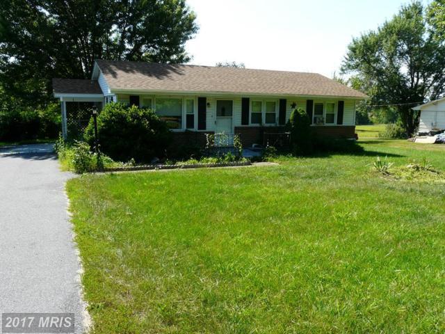 3445 Smith Creek Road, New Market, VA 22844 (#SH8705358) :: Pearson Smith Realty