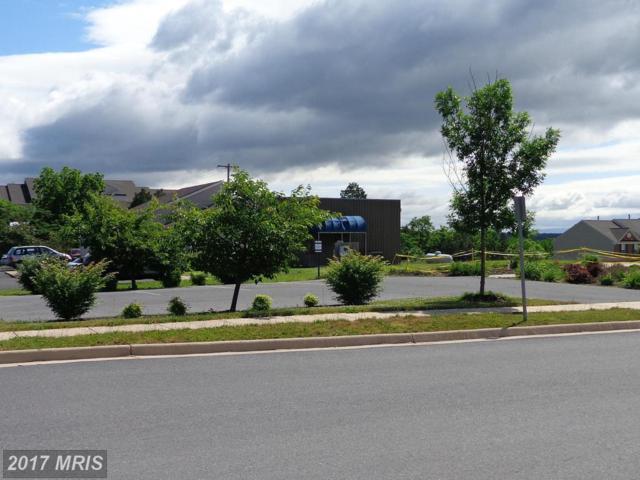 109 Oxbow Drive, Strasburg, VA 22657 (#SH9523070) :: Pearson Smith Realty